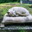Как пережить смерть кота