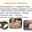 Если кошка умирает дома приметы